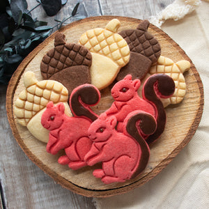 squirrel and acorn cookies