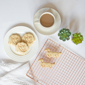 long haired dachshund dog and face portrait cookies