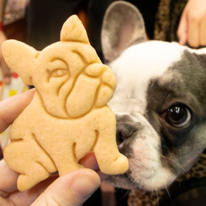 french bulldog cookie