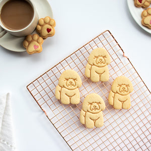 bichon frise dog cookies