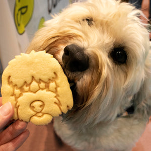 Goldendoodle Face Cookie