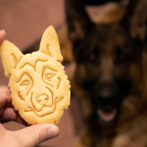 german shepherd cookie