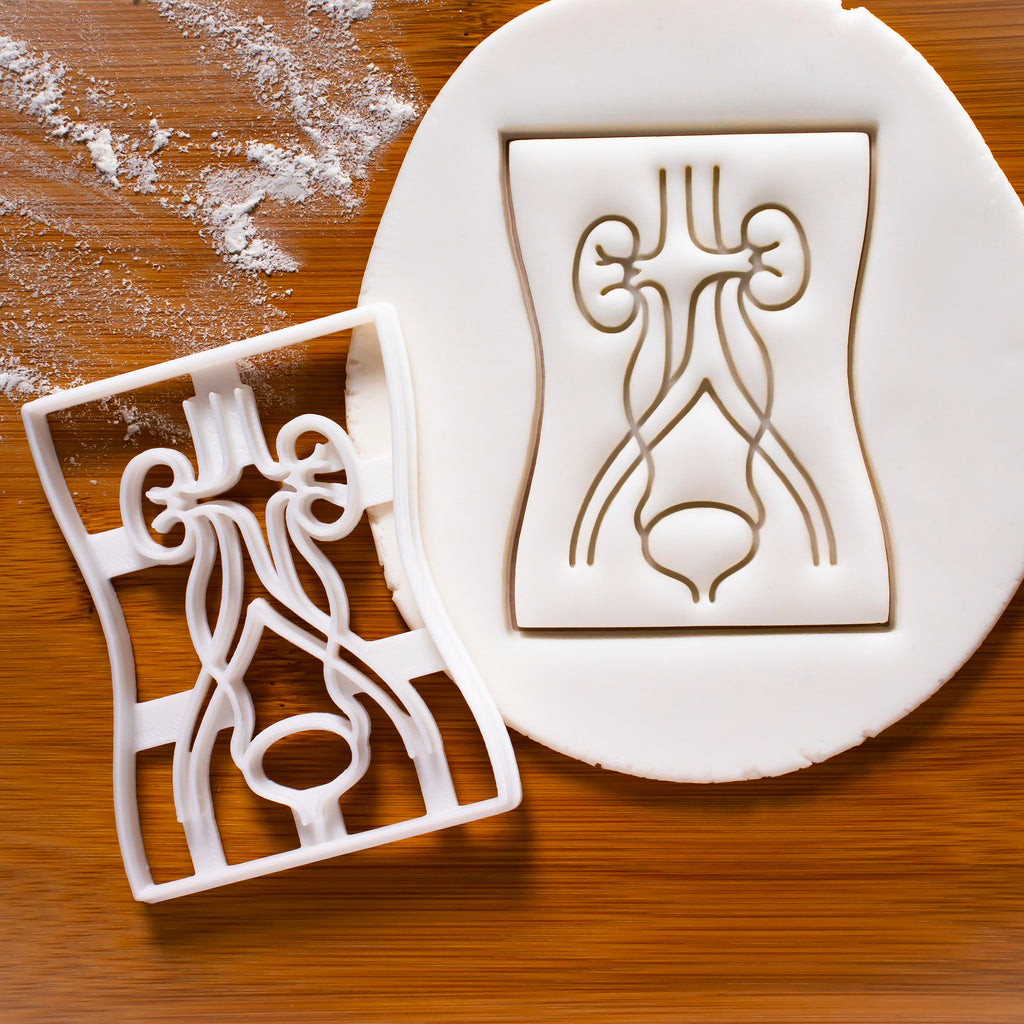 Urinary System Cookie Cutter