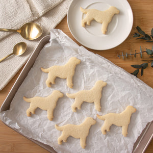 labrador retriever cookies