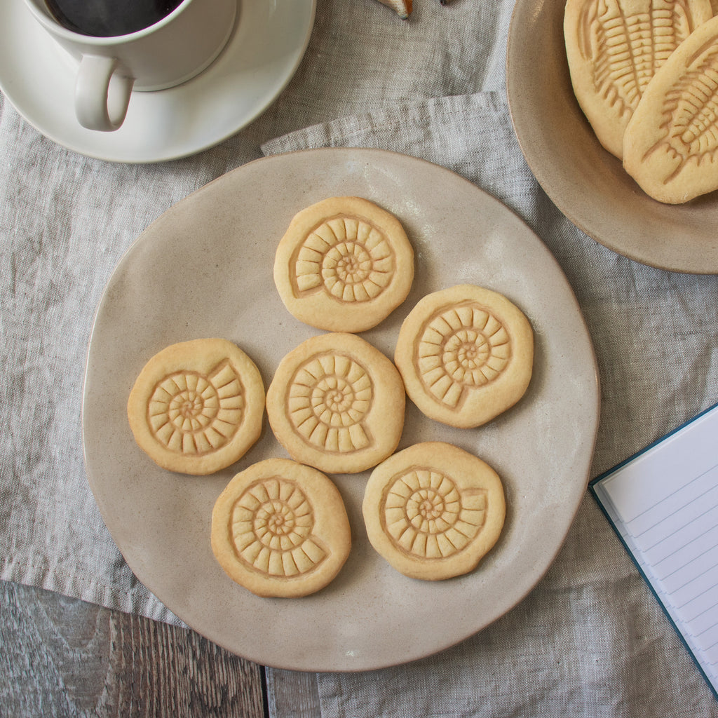 ammonite fossil cookies