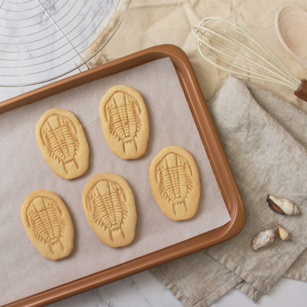 trilobite fossil cookies