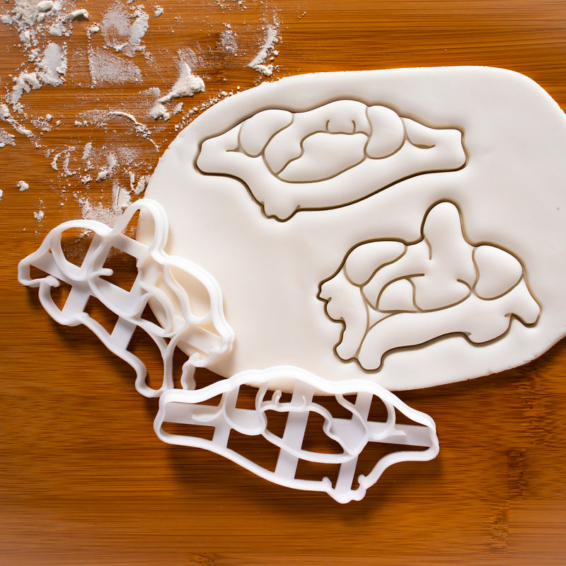 Axis Vertebra Cookie Cutter