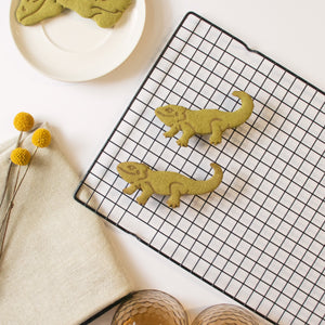 pogona bearded dragon matcha cookie