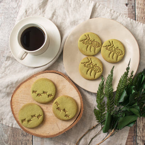 realistic ant and ant trail cookies