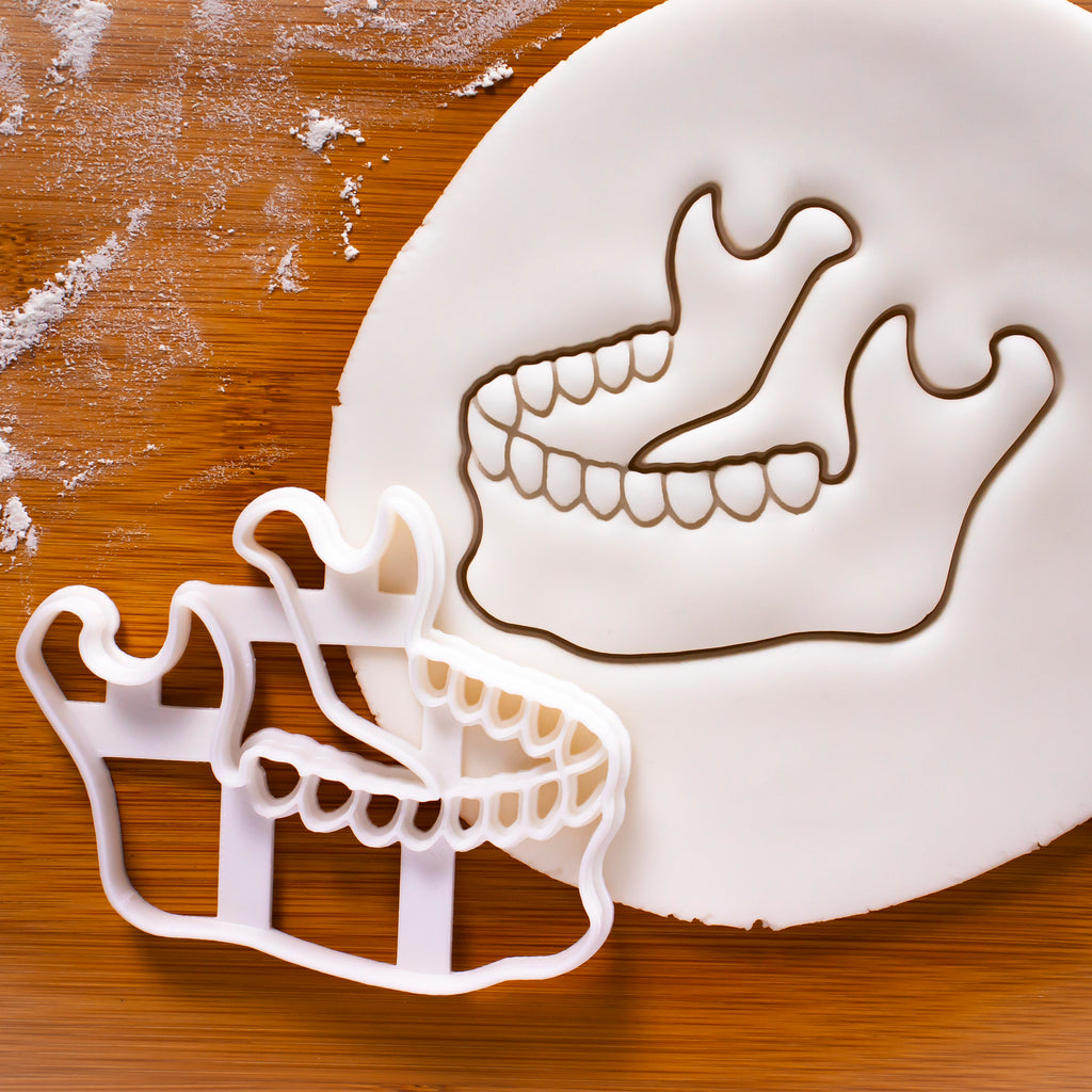 Anatomical Human Mandible Bone Cookie Cutter