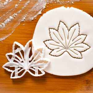 Japanese aralia (paperplant) cookie cutter