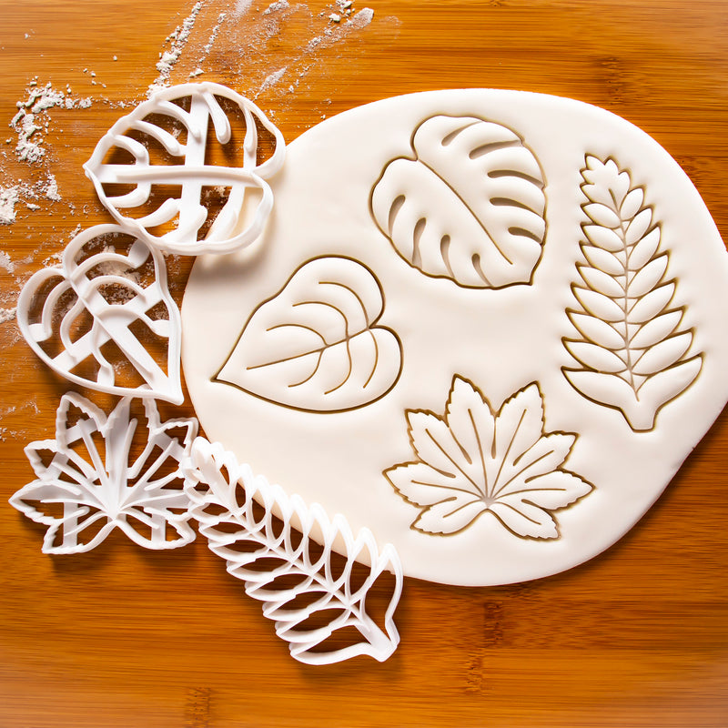 Monstera (Swiss Cheese Plant), Fern, Devil's Ivy, and Japanese Aralia (Paperplant) cookie cutters