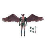 Legends Of Tomorrow Hawkgirl Action Figure