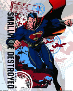 Superman Smallville Destroyed Mini Poster