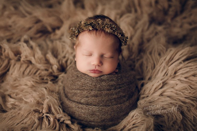 Dawson dried foliage gumnut jute soft wire halo photography photo prop newborn