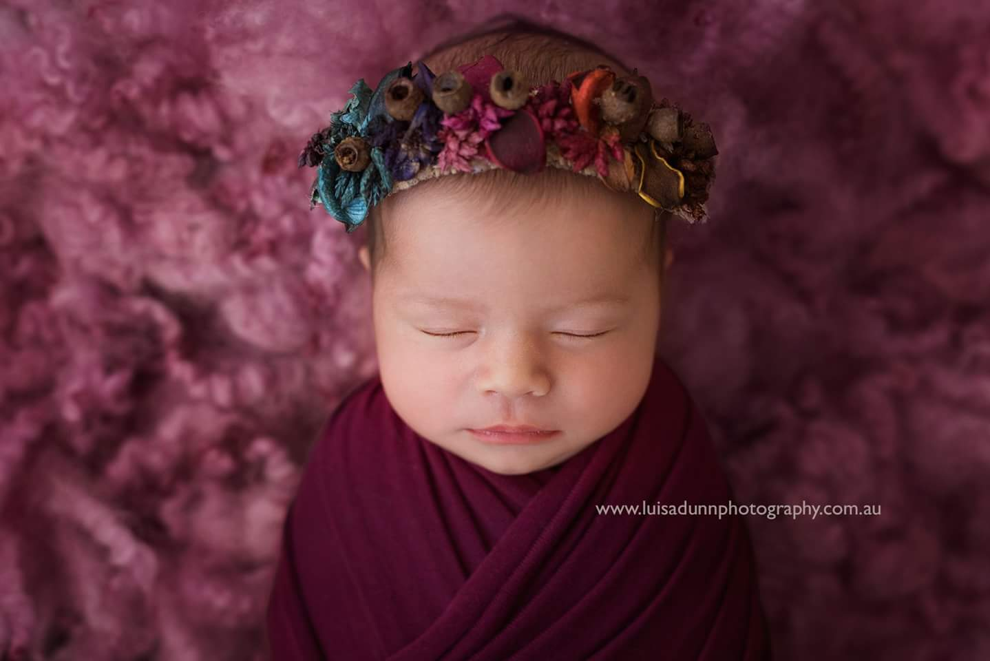 Gumnut & bloom,gumnut and bloom,Luisa Dunn,newborn photo props,