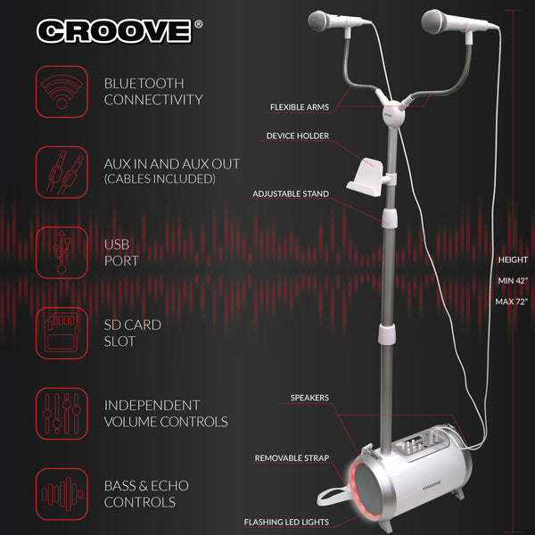 Karaoke Machine For Adults And Kids With 2 Microphones