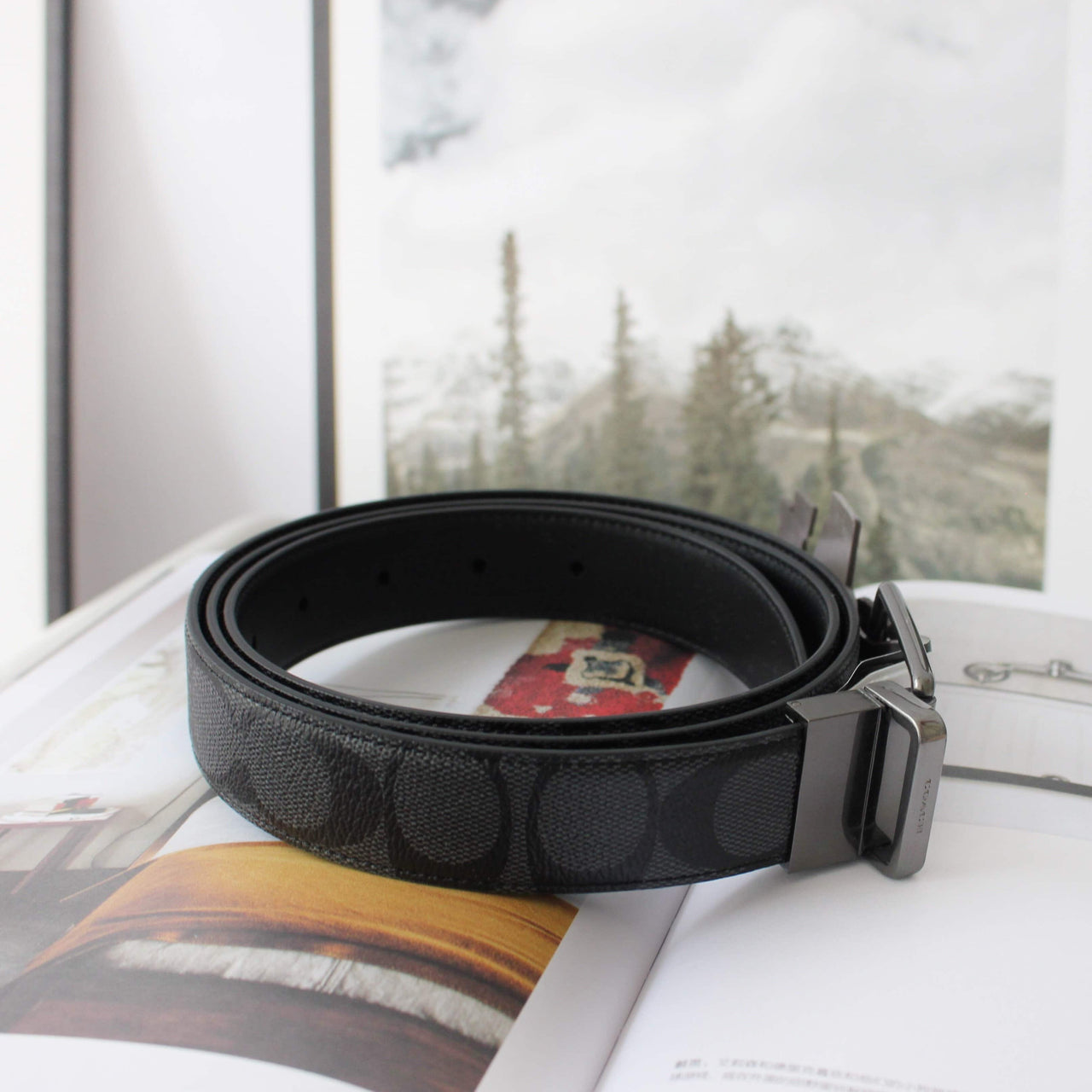 COACH MODERN HARNESS CUT-TO-SIZE REVERSIBLE SIGNATURE COATED CANVAS BELT - Lovely Madness