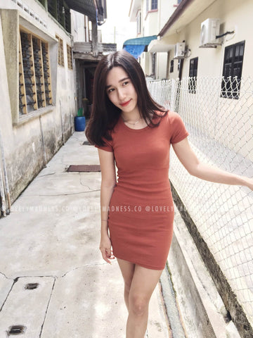 Blaire Tube Mesh Dress