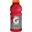 Gatorade Fruit Punch 32oz