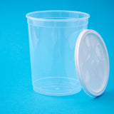 Lid Transparent Pot