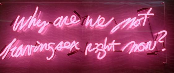 Why Are We Not Having Sex Right Now Neon Sign