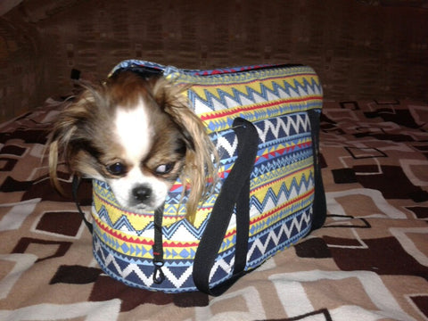 Carrier Backpack For Dachshund, Small Dog Carrier Backpack