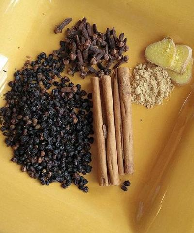 Simply Ginger: Organic Elderberry Syrup Kit
