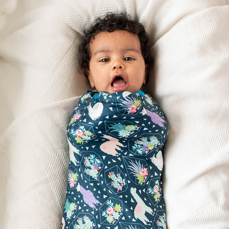 bumblito - stretch swaddle set - Tina print - Llamas and succulent print newborn swaddle - stretchy newborn swaddle