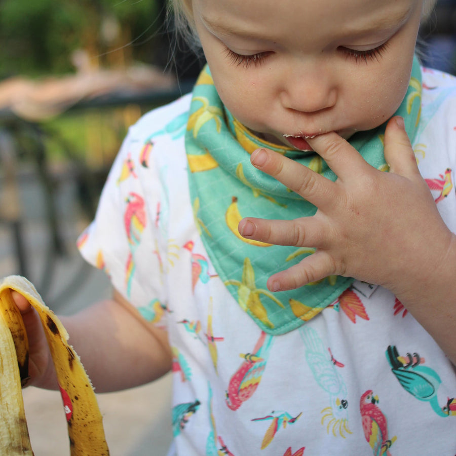 bumblito - bandana bib - 100% cotton children's bib - Go Bananas print - made in the United States