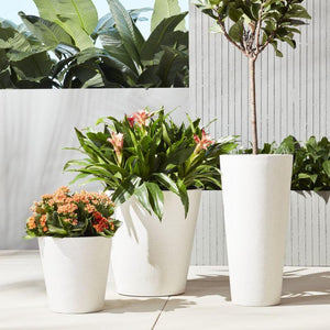 Outdoor Seasonal Planter Arrangements