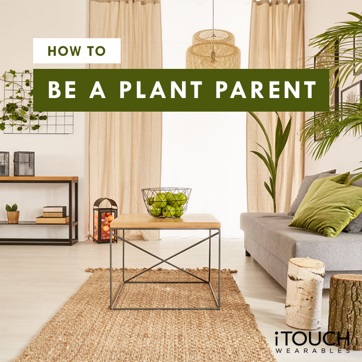 How To Be A Plant Parent