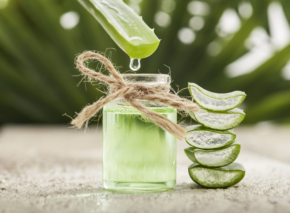 Alternative Uses Of Aloe Vera