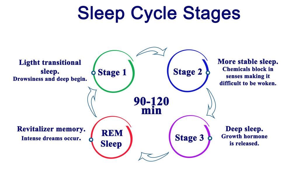 What Are The Different Stages of Sleep?