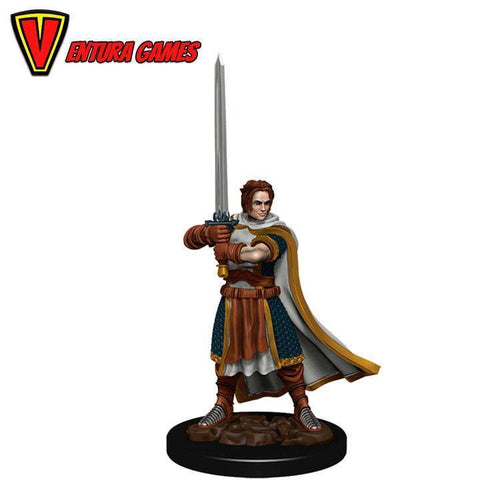 D&D Icons of the Realms: Premium Painted Figure - Human Cleric Male - Ventura Games