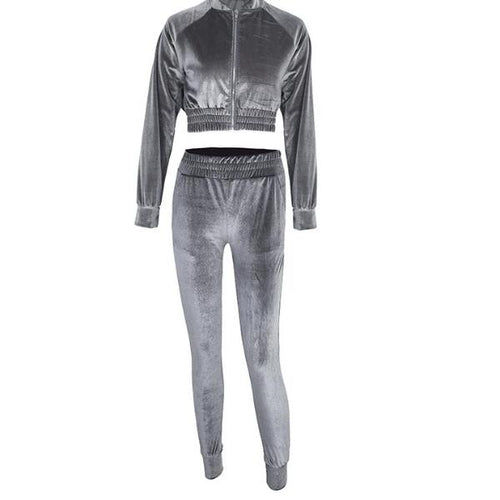 Velvet Track Suit - Velvet Crop Top Track Suit Set Gray / Silver