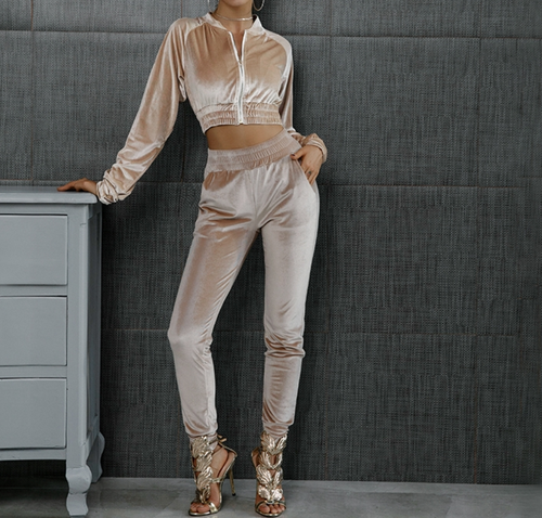 Velvet Track Suit - Velvet Crop Top Track Suit Set Nude / Tan