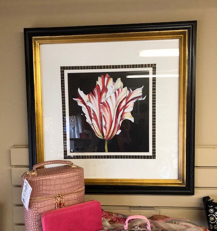 Matted/Framed Flower Pictures 1 / Set of 4