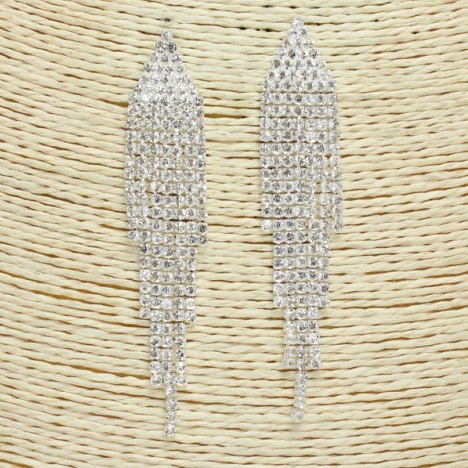 Fringe Look Rhinestone Earrings