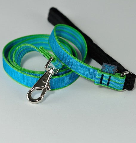 Rescue Dog PBC Leash Padded Handle