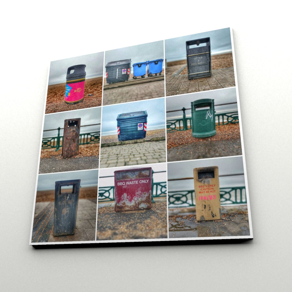 Bins of Brighton & Hove (Print)
