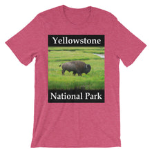Yellowstone t-shirt