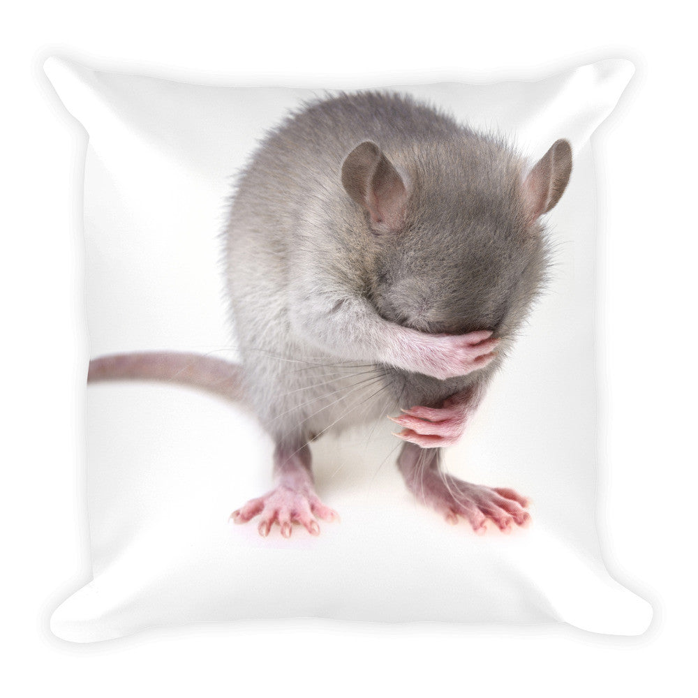 Mouse Pillow
