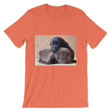 Puppies t-shirt