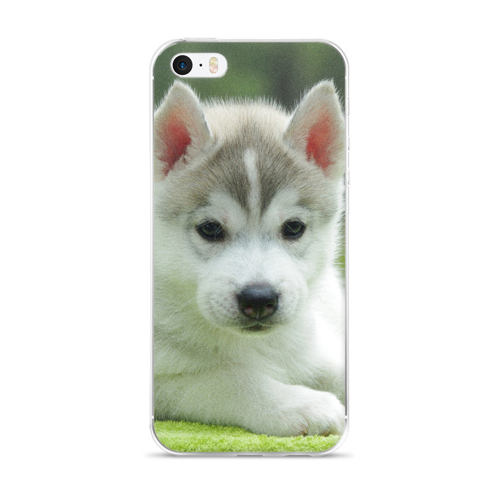 Husky Puppy iPhone 5/5s/Se, 6/6s, 6/6s Plus Case
