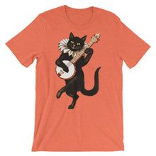 Banjo Cat t-shirt
