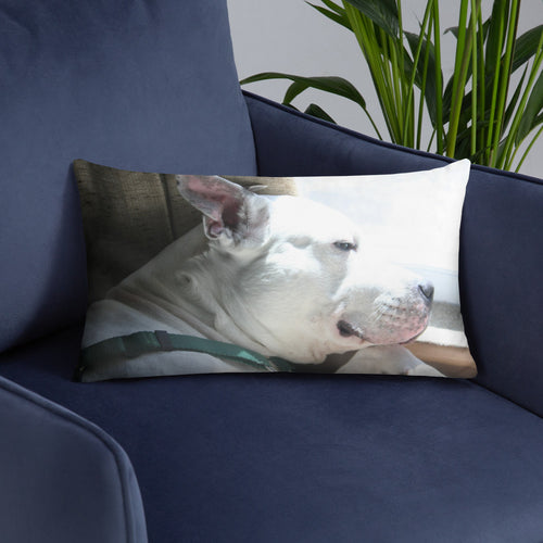 Duke Pillow