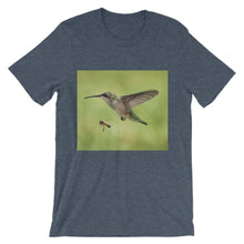 Hummingbird and Bee t-shirt