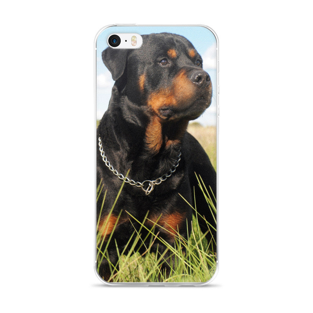 Rottweiler iPhone 5/5s/Se, 6/6s, 6/6s Plus Case