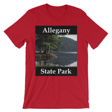 Allegany State Park t-shirt